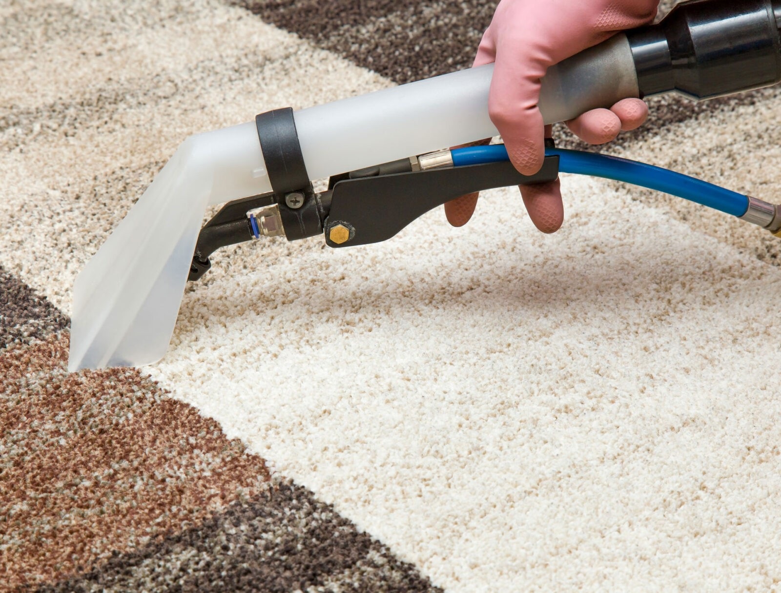 ind carpetcleaning expert tek rug carpet cleaning carpetteks