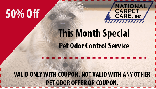 pet odor control services 50% off orlando