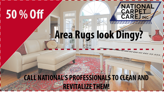 50% area rug cleaning orlando